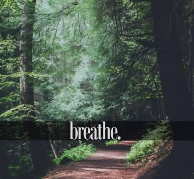The Perfect Day breathe